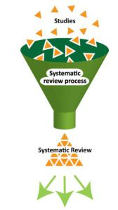 Systematic review in thesis